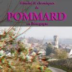 Histoire & chroniques de POMMARD